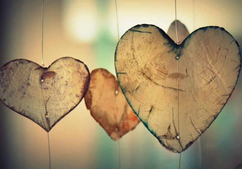 heart-birch-hi